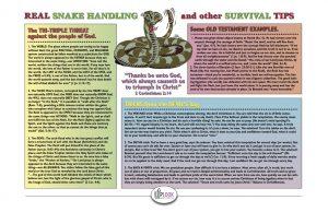 snake chart